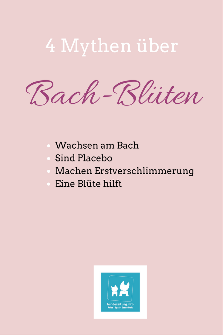 In diesem Beitrag kläre ich über 4 typische Mythen über Bach-Blüten auf
