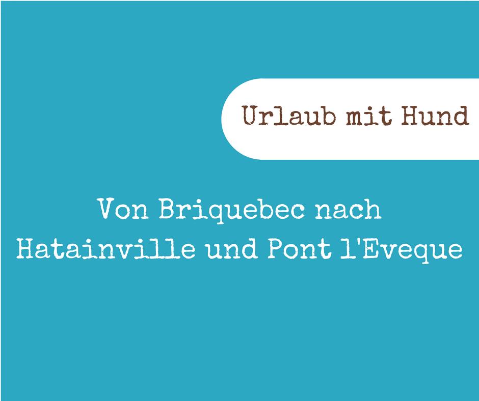 Von Briquebec nach Hatainville und Pont l'Eveque