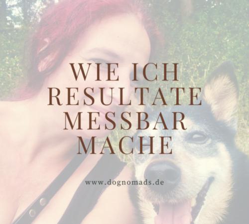 Dog-E-motion_Herz und Leine (11)