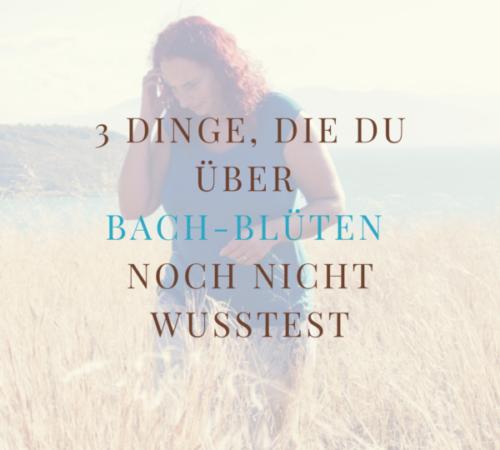Dog-E-motion_Herz und Leine (23)