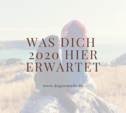 Dog-E-motion_Herz und Leine (7)